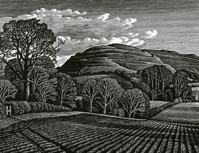 Hambledon Hill By Howard Phipps The Rowley Gallery