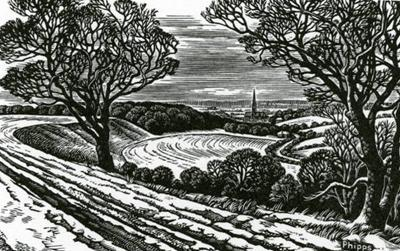 Salisbury From Clarendon In Winter by Howard Phipps