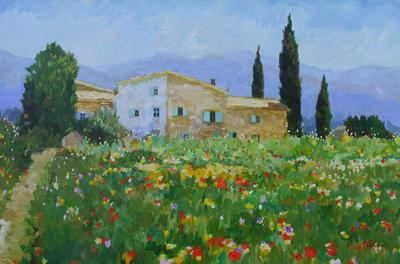 Farmhouse & Wildflowers, Les Tourettes, Provence by Marcel Gatteaux