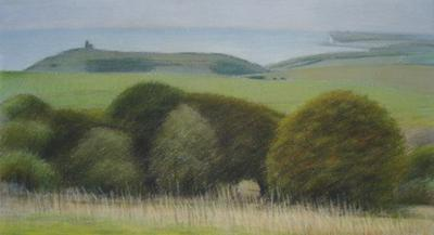 Sussex Downs Near Birling Gap With The Belle Tout Lighthouse by David Stubbs