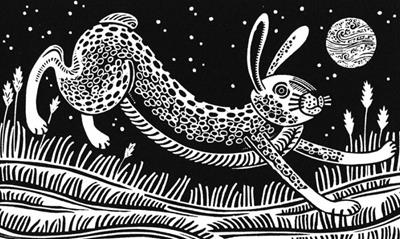 The Witch Hare by Linda Farquharson